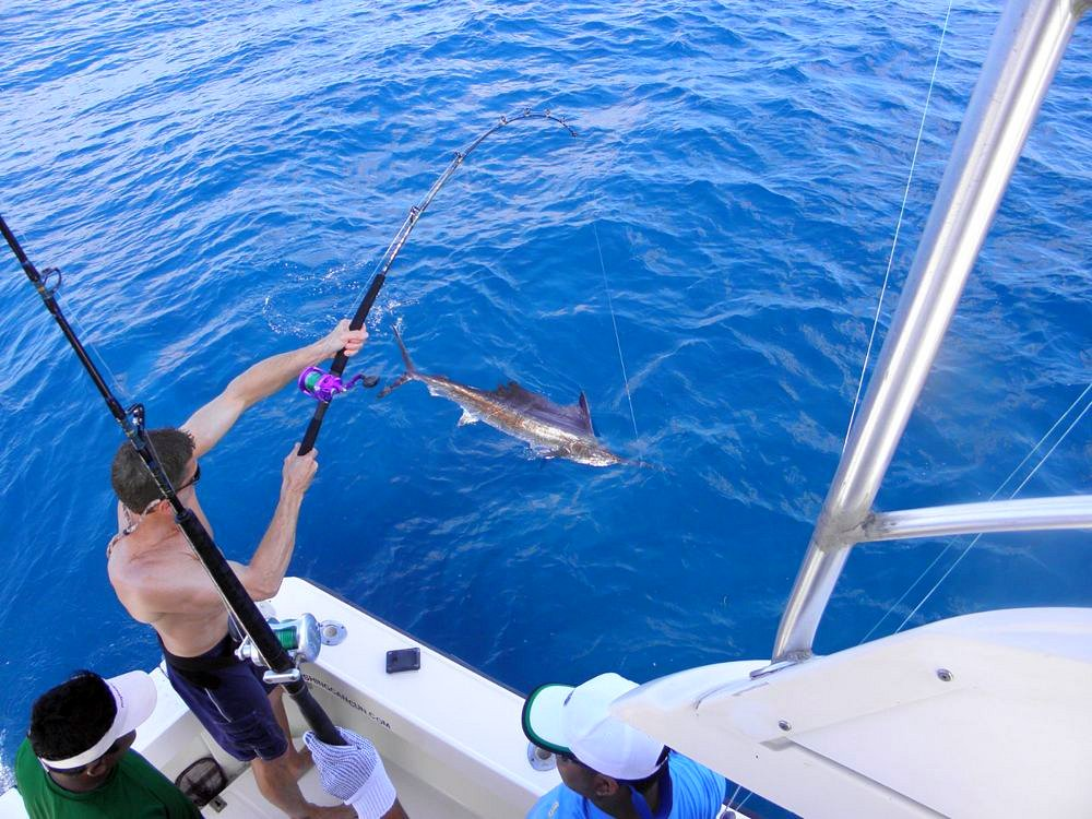 Deep sea fishing new real tours jamaica for Deep sea fishing jamaica